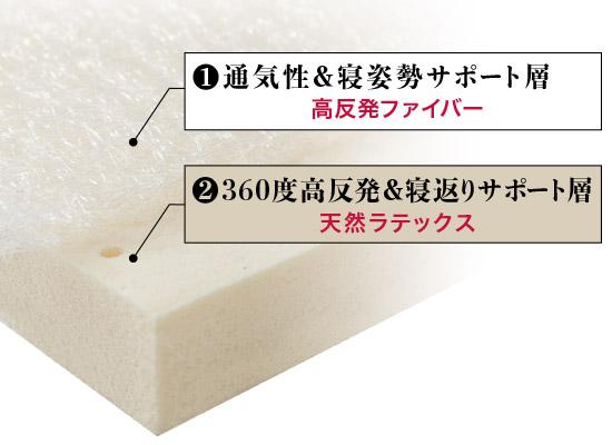 天然ラテックス × 高反発ファイバー