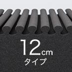 12cmタイプ