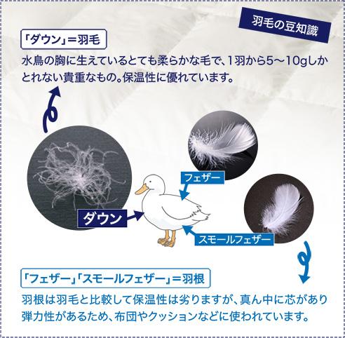 四季のある日本に合わせた快眠設計